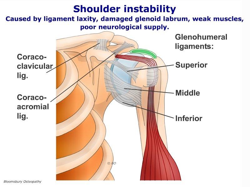 Shoulder Instability Shop04